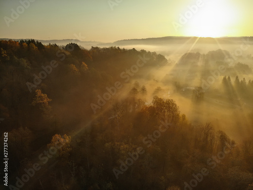 Wall Murals Cappuccino Beautiful foggy forest scene in autumn with orange and yellow foliage. Aerial early morning view of trees and river.