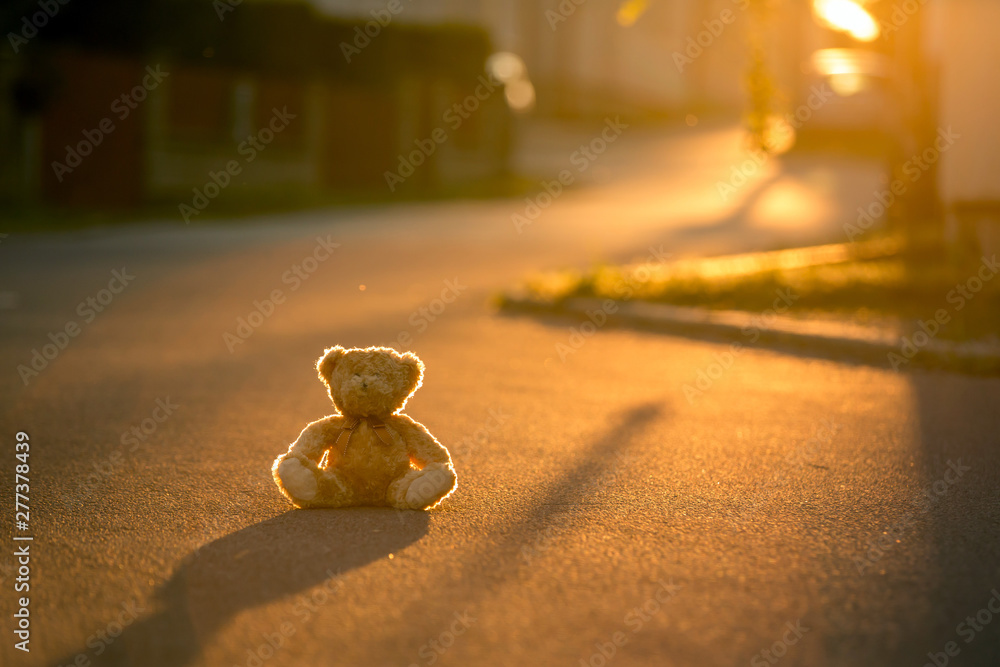 Fototapety, obrazy: Little teddy bear, sitting on the street on sunset, back lit