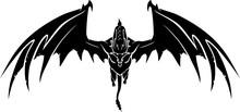 Black Dragon Front View