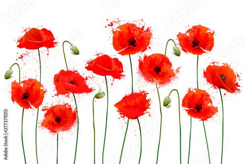 Red Poppy flowers background. Vector illustration