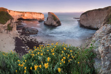 Panoramic View Over Shark Fin Cove (Shark Tooth Beach). Davenport, Santa Cruz County, California, USA. Sunset In California - Waves And Sun Hitting These Beautiful Rock Formations With Flowers.