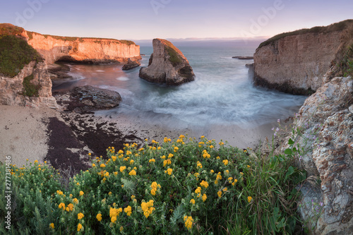 Foto auf AluDibond Cappuccino Panoramic view over Shark Fin Cove (Shark Tooth Beach). Davenport, Santa Cruz County, California, USA. Sunset in California - waves and sun hitting these beautiful rock formations with flowers.