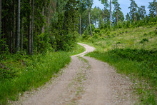 Romantic Gravel Dirt Road In Countryside In Summer Green Evening