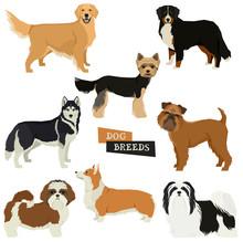Vector Illustration Dog Collec...