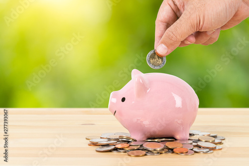 Fototapeta Piggy bank on money pile with hand putting money, green tree background, saving concept obraz