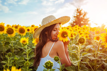 Young Woman Walking In Blooming Sunflower Field And Smelling Flowers. Summer Vacation