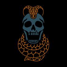 Skull And Dangerous Snake Color On Black Background