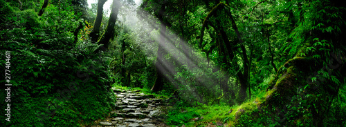 Recess Fitting Waterfalls Southeast Asian rainforest with deep jungle