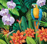 Background with tropical jungle plants