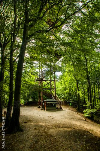 Fototapeta Wieżyca wieża widokowa kaszubski park krajobrazowy kaszuby widok las jezioro obraz