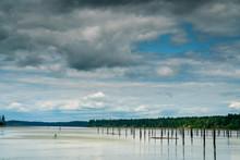 Paddle Board Puget Sound