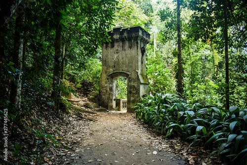 Caminho para o Cristo Redentor - Parque Lage, Rio de Janeiro, RJ Fotobehang