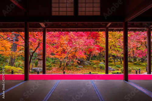 Printed kitchen splashbacks Kyoto 京都 圓光寺の紅葉