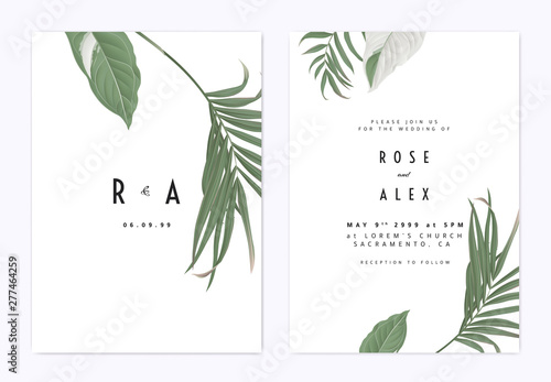 Valokuva Minimalist botanical wedding invitation card template design, green bamboo palm