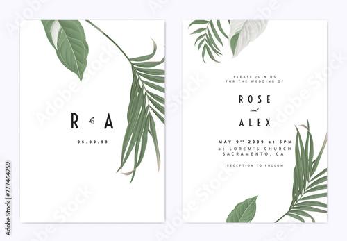 Minimalist botanical wedding invitation card template design, green bamboo palm Fototapet