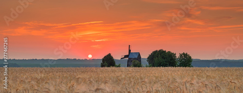 Corail panorama of sunrise with old windmill in wheat field in Ukraine