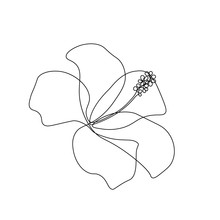 Hibiscus Flower In One Line Ar...
