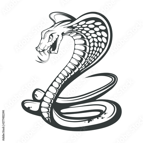 black king cobra logo snake tattoo indian cobra illustration drawing vector illustration aggressive and evil spectacled cobra or naja naja vector graphics to design buy this stock vector and explore similar black king cobra logo snake tattoo