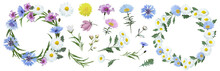 Botanical Collection Of Wildflowers: Blue Cornflowers, Pink Flowers, White Daisies, Dandelions, Leaves, Twigs, Buds. Flower Frame,wreath. Watercolor.