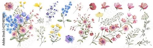 Fotografia Field flowers