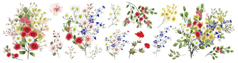 Panel Szklany Do kuchni Field flowers. Watercolor illustration. Botanical collection of wild and garden plants. Set: various wildflowers, pink, blue, yellow, leaves, bouquets, branches, herbs and other natural elements.