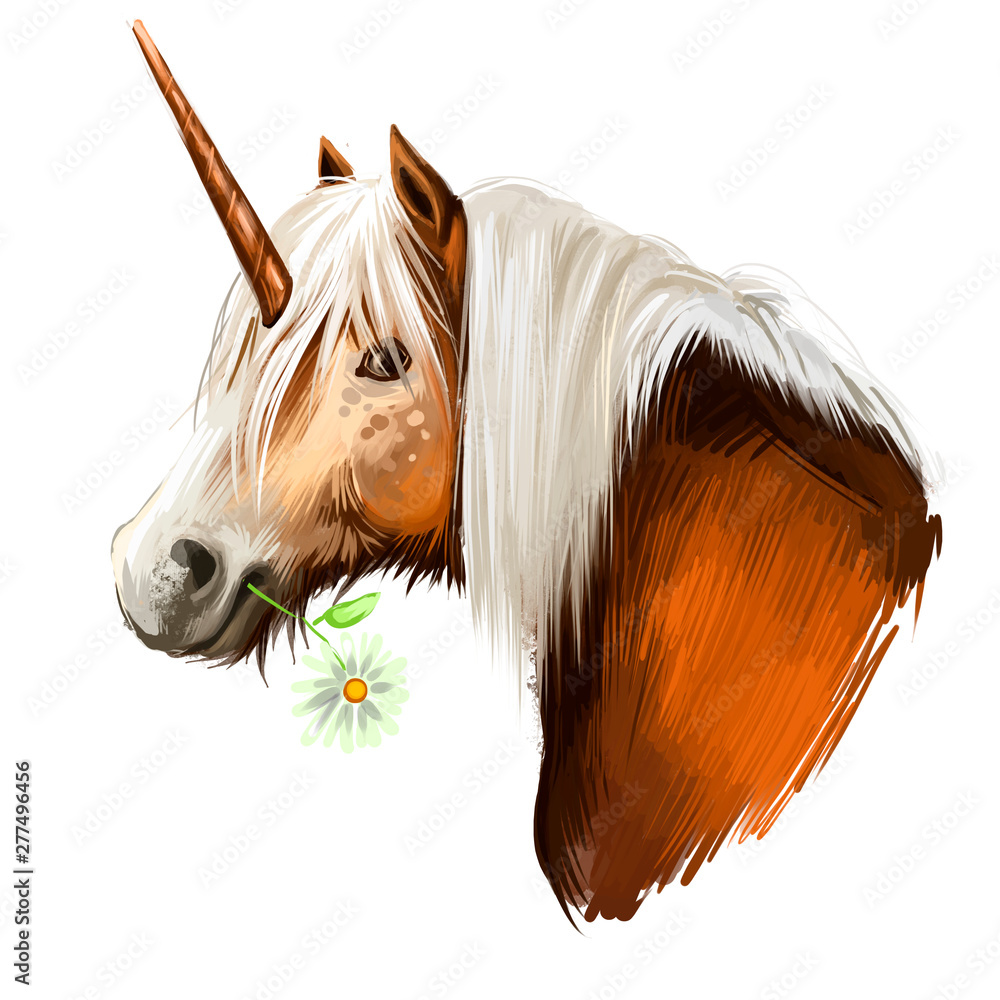 Fototapeta Unicorn digital art illustration isolated on white background