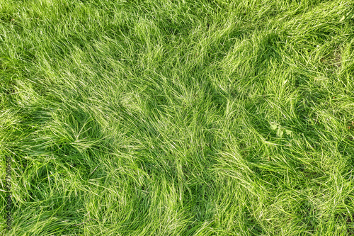 Green Grass Landscape Pattern Background Top Down View Of Lawn Meadow Texture For Design Natural Color Hi Resolution Photo For Wallpaper Design Template Buy This Stock Photo And Explore Similar Images