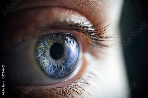 Foto op Aluminium Iris Macro photo of the woman's blue eye