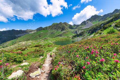 Obraz Porcile lakes in the brembana valley on the Orobie Alps - fototapety do salonu