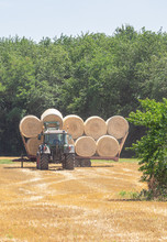 Tractor Loads Round Bales Of H...