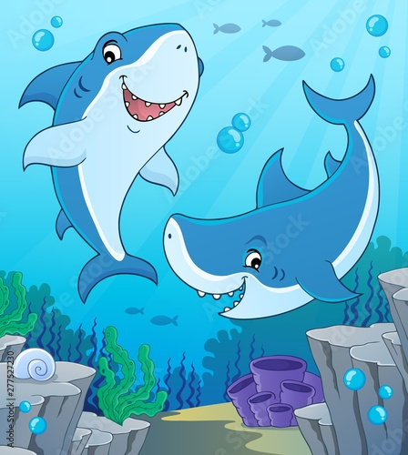 Photo Stands For Kids Shark topic image 4