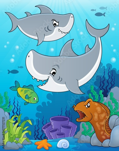 Photo Stands For Kids Shark topic image 5