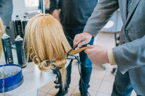 Fotografie, Obraz  Care of a female wig in hairdressing salon