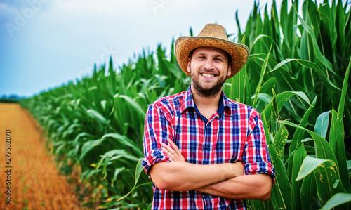 Fotografia  Farmer in a corn field. Agricultural concept