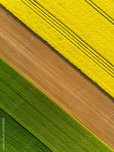Pole pola rzepak rzepaku kwitnie wieś farma przemysł rolnictwo wiosna maj