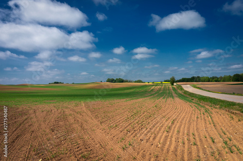 Poster Melon Gravel country road through farm fields and meadow