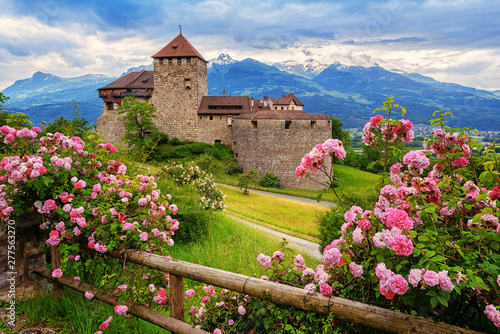 Vaduz castle, Liechtenstein, Alps mountains Wallpaper Mural