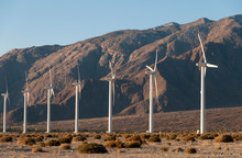 USA, California, Palm Springs.  San Gorgonio Wind Farm.  In The  Coachella Valley It Is One Of The US's Largest Wind Farms. It Contains More Than 4000 Separate Windmills In A 70-square-mile Area And P