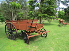 Wagon In The Middle Of The Green Garden