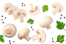 Mushrooms With Slices, Parsley Leaf And Peppercorns Isolated On White Background. Top View