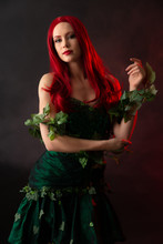 Poison Ivy Character In Batman