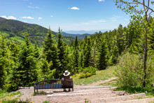 Santa Fe National Forest Aspen Vista Picnic Area Park In Sangre De Cristo Mountains With Horizon And Green Aspen Trees In Spring Or Summer And Bench