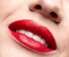 Closeup Macro Portrait Of Fema...