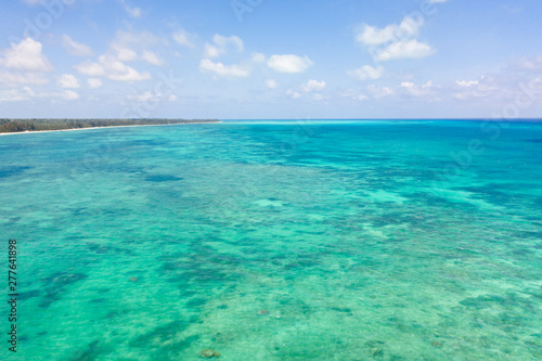 Fototapeta Coral reefs and atolls in the tropical sea, top view. Turquoise sea water and beautiful shallows. Philippine nature. obraz na płótnie