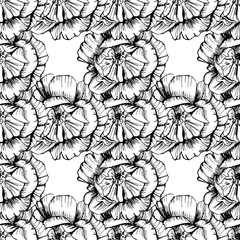 Vintage sketch card with hand drawn roses seamless. Modern vector illustration.