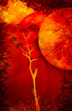Dry Trees, Roots, Flowers On A Red Hot Background. Global Warming On Planet Earth. Global Warming. Imagination.  Fantasy Photo Collage