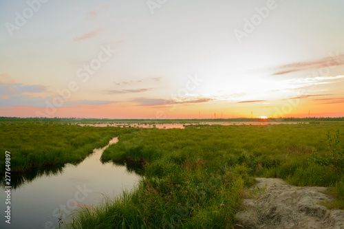 Obraz na plátně  Sunset over the sedge lake in summer
