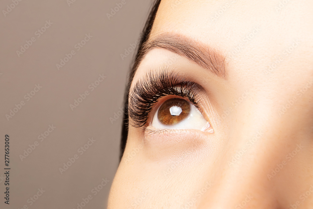 Fototapety, obrazy: Brown female eye with beautiful long lashes closeup. Brown color eye lash extension, 3D or 4D volume. Eyelash care, lamination, extensions, coloring, curling