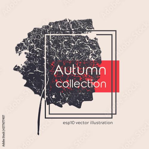 Photo Isolated aged black autumn leaf print