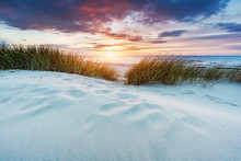 Grassy Dunes And The Baltic Se...